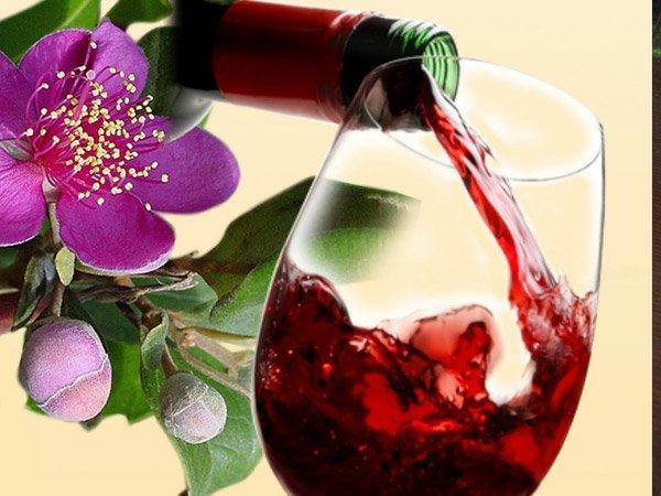 Rượu sim, đặc sản của Phú Quốc